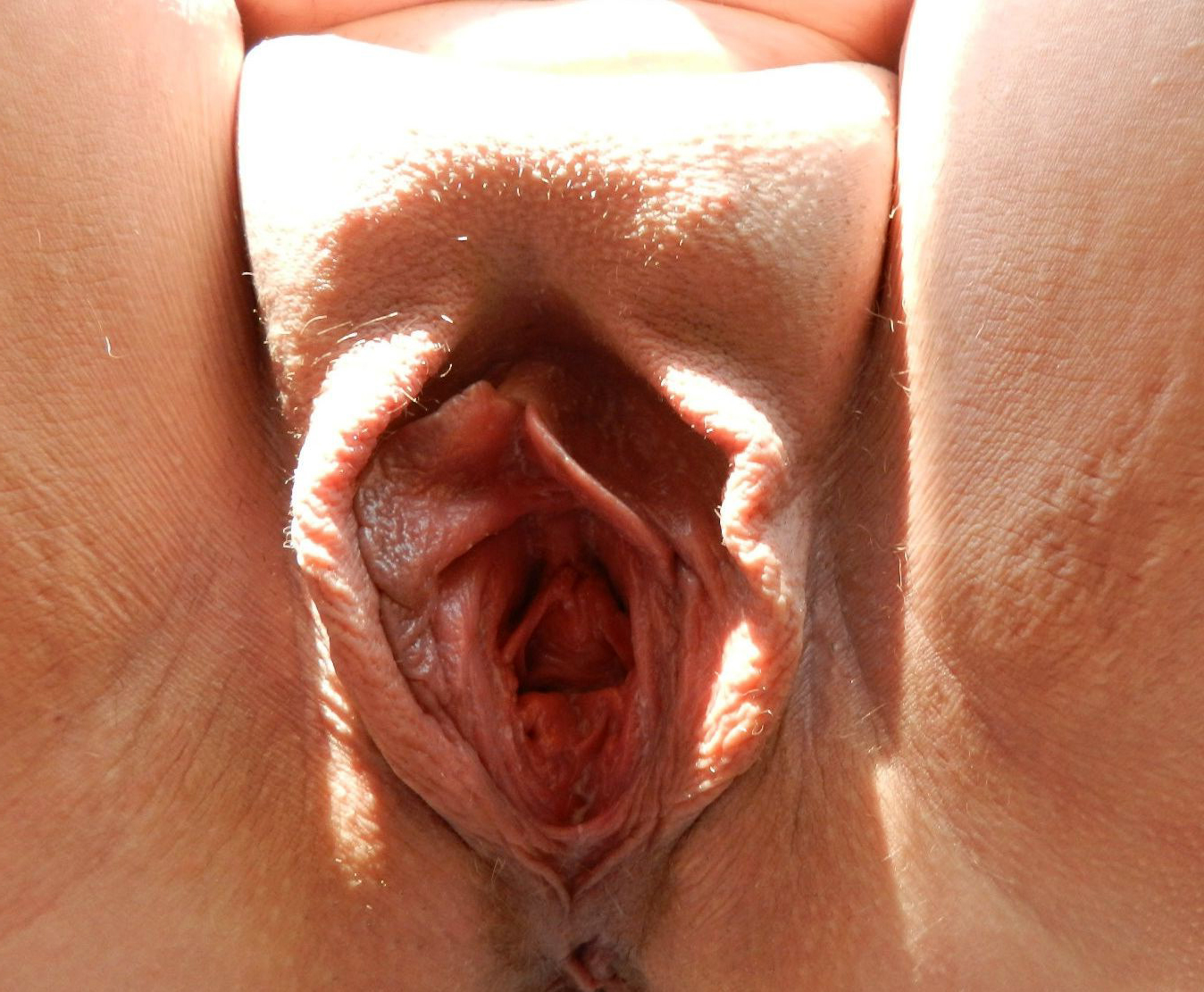 Close Up Pussy Dick Fuck